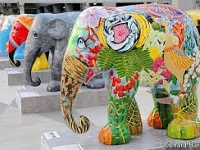 The Elephant Parade